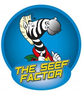 "Logo ""The SEEF factor"""